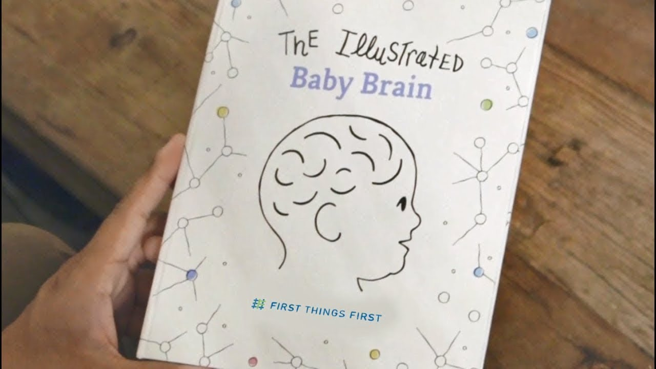 Early Brain Connections Key To Reading >> Brain Development First Things First