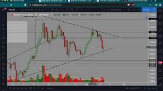 Do the opposite of Bitcoin retailers | Don't short strong volume and support | Free trade setups!