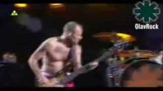 Red Hot Chili Peppers - Readymade Live (High Quality)