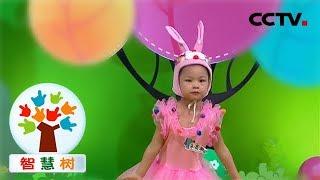 《智慧树》家庭才艺秀:阳光彩虹小白马 你是最强哒最棒哒最亮哒最发光哒 20181123   CCTV少儿