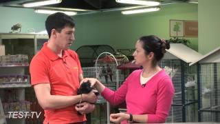 TEST.TV: Покупаем кролика, что нужно знать?