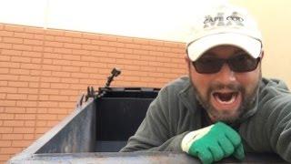 Big Score At Petco Dumpster Diving