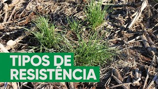 Tipos de resistência de plantas daninhas