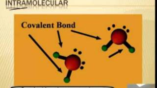Intro to Chemistry:  Intermolecular Forces 1/2