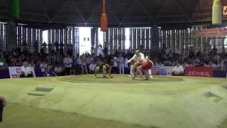 Чемпионат мира по Сумо 2015 г.Осака,Япония. (JPN vs POL)