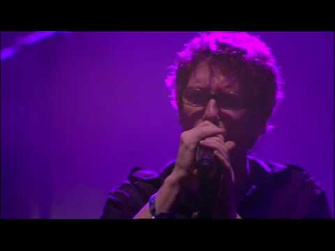 PSYCHEDELIC FURS UK Tour 2017 -  Singles Live Shows