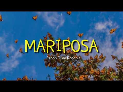 • peach tree rascals - mariposa (lyric) // sub indo