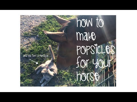 How To Make Popsicle Horse Treats