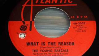 Watch Rascals What Is The Reason video