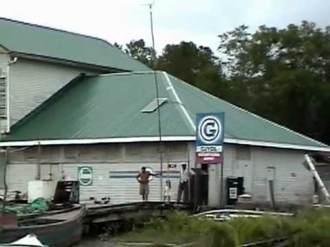 Wild Guyana