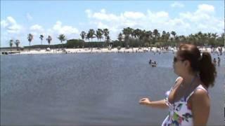 Miriã Caixêta visita o Matheson Hammock Park em Miami