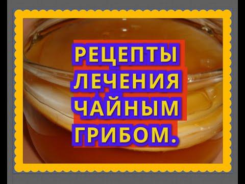 Как ухаживать за чайным грибом: как мыть, что заливать для