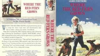 My Husband s Where the Red Fern Grows Movie Critique