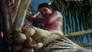 Repeat youtube video Kattukuthira Part 2