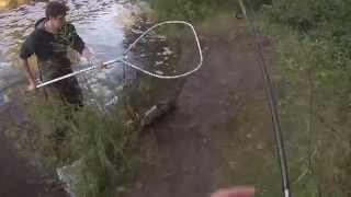 Fall 2014 Wisconsin Salmon Run