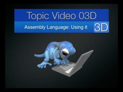 Topic03D - Assembly Language: Using it