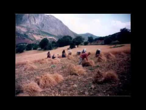 Erzincan İliç kuruçay konukçu köyü Bizgi