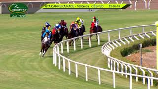 Vidéo de la course PMU ALLOWANCE 1600