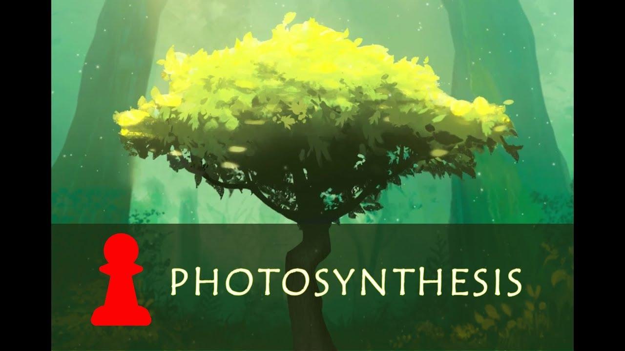 Photosynthesis board game prezentare