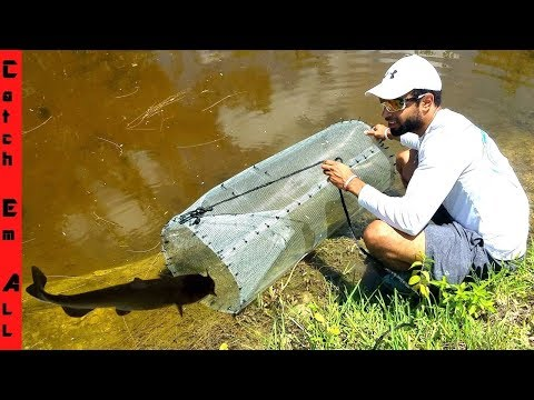 BEST FISH TRAP Using Only HOME DEPOT Supplies Diy CATCHES FISH!