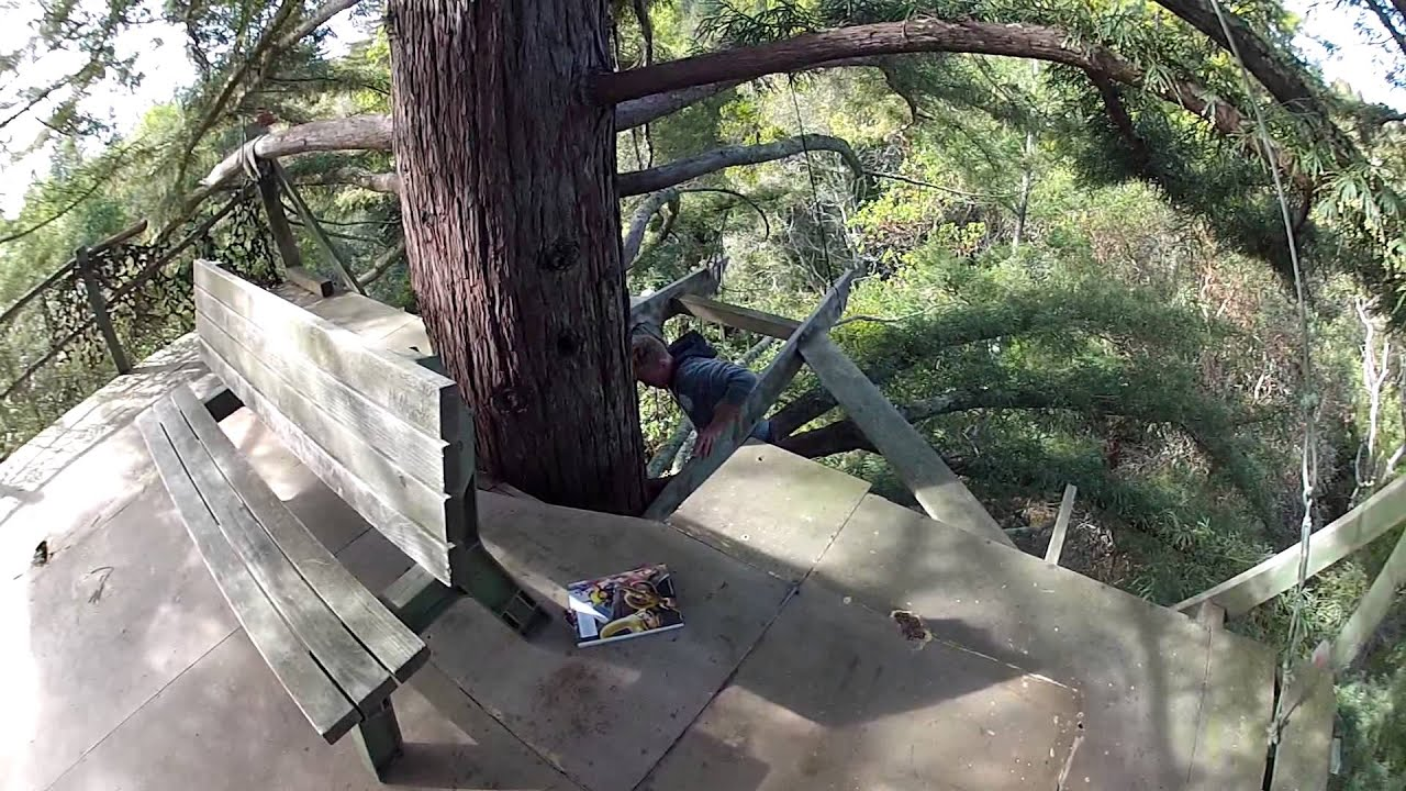 Best Tree House Ever Youtube