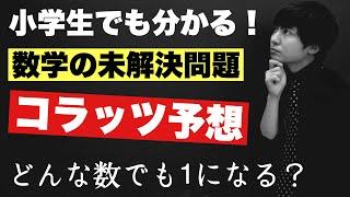 進化したらラッツ予想?(ポケモンネタ) このチャンネルのスポンサーをこちらで募集しています↓ https://camp-fire.jp/projects/view/130136 ...