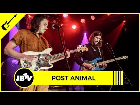 Post Animal - Heart Made of Metal   Live @ JBTV Mp3
