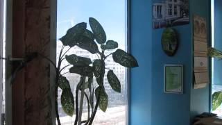 Офис на Дубнинской 83(Прекрасный офис класса В Площадь офиск 38,8 кв. м, основание квадрат 7 (директорский) этаж с большими открывающ..., 2015-03-24T21:37:58.000Z)