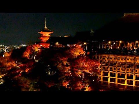 晩秋の日本列島は恋人たちの聖地へと変わるのだ。