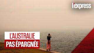 Australie : une tempête de sable frappe le pays