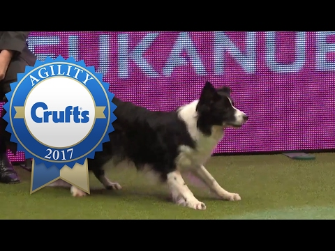 Agility Championship - Round 2 Part 1 | Crufts 2017