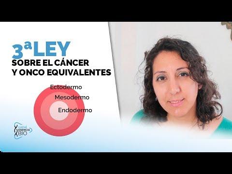3ª-ley-biológica-sobre-el-cáncer---las-capas-embrionarias
