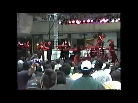 Cameo- Rigor Mortis & Knights by Knights - Live