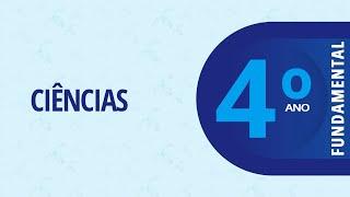 11/02/21 - 4º ano do EFI - Ciências -  Animais e suas classificações