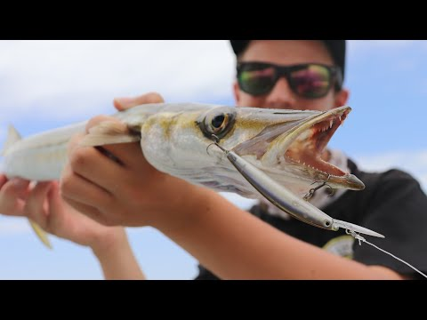 Awesome Surface Lure Snook And Squid Action! | Fishing South Australia