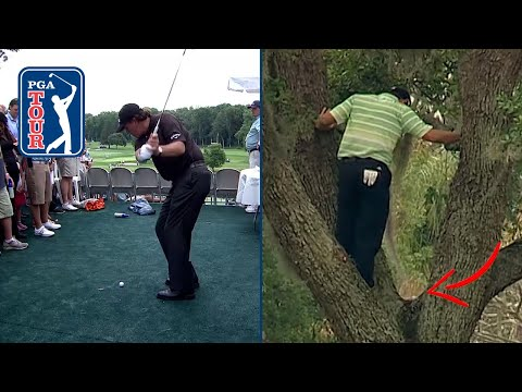 WHAT ARE THE ODDS?! | Golf balls landing in weird places