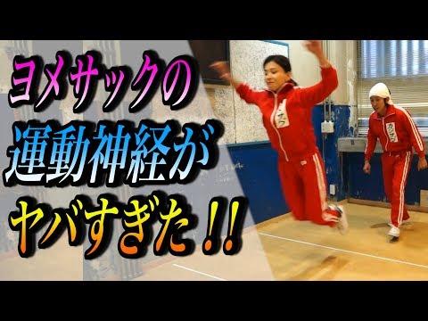 カジサックファミリーでスポーツテストやってみた!~おまけのせんちゃんに注目!~