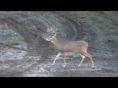 HeadHunters TV - Wyoming Whitetails - Outdoor Channel