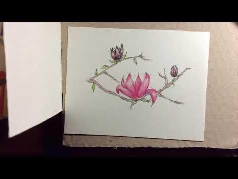 Apenas Flor | Just Flower