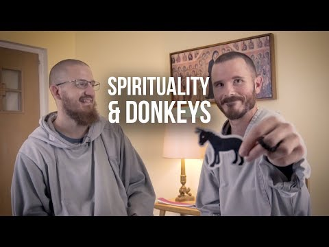 The Spiritual & Biblical Significance of Donkeys