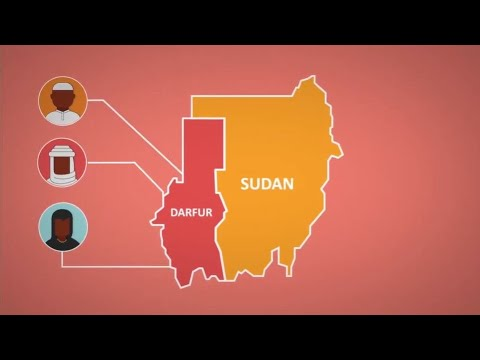 What is Going On in Darfur?