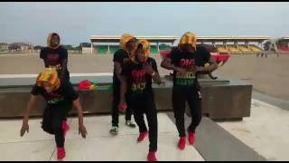 We Dey Collect Dance Video
