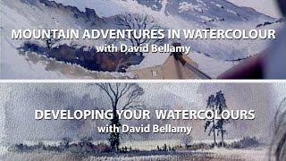 David Bellamy Twin Pack (2)