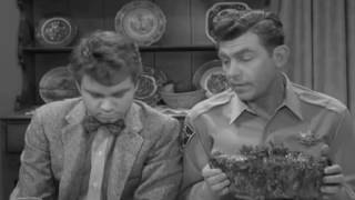 The Andy Griffith Show   Cousin Virgil