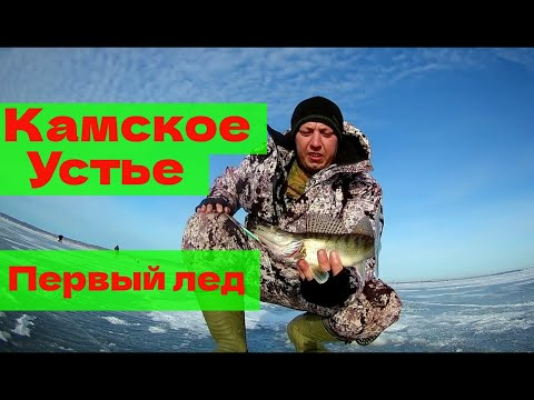 Ловля судака зимой на камском устье - Про рыбалку