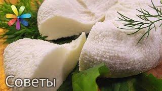 Индийский Сыр Панир в домашних условиях от Тани Литвиновой