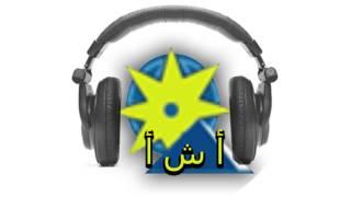 الرئيس السيسي يستقبل عبد ربه منصور هادي في موجز من أ ش أ