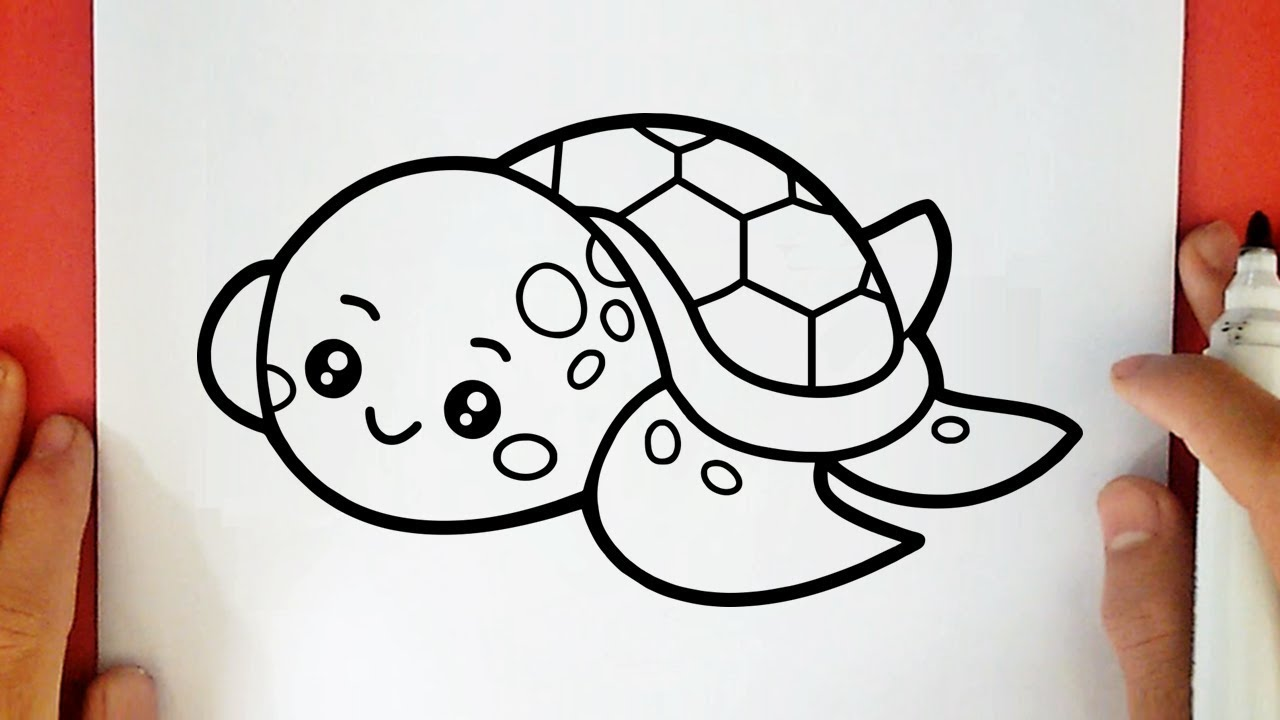 comment dessiner une tortue de mer kawaii