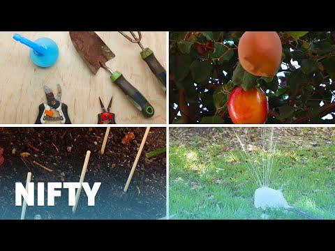 4 DIY Garden Tips And Tricks