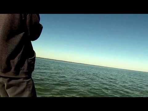 World Class Fishing Mosquito Lagoon Tug Of War Charters